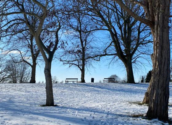 Bankje in de Sneeuw, Grave